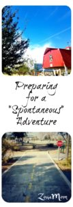 Packing for Adventure, Spontaneous excursions, family outings, park day, pack a lunch, picnic, no destination just preparation, family fun, fun with kids, be prepared