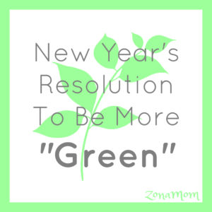 Tips To Be More Environmentally Friendly | Green Living