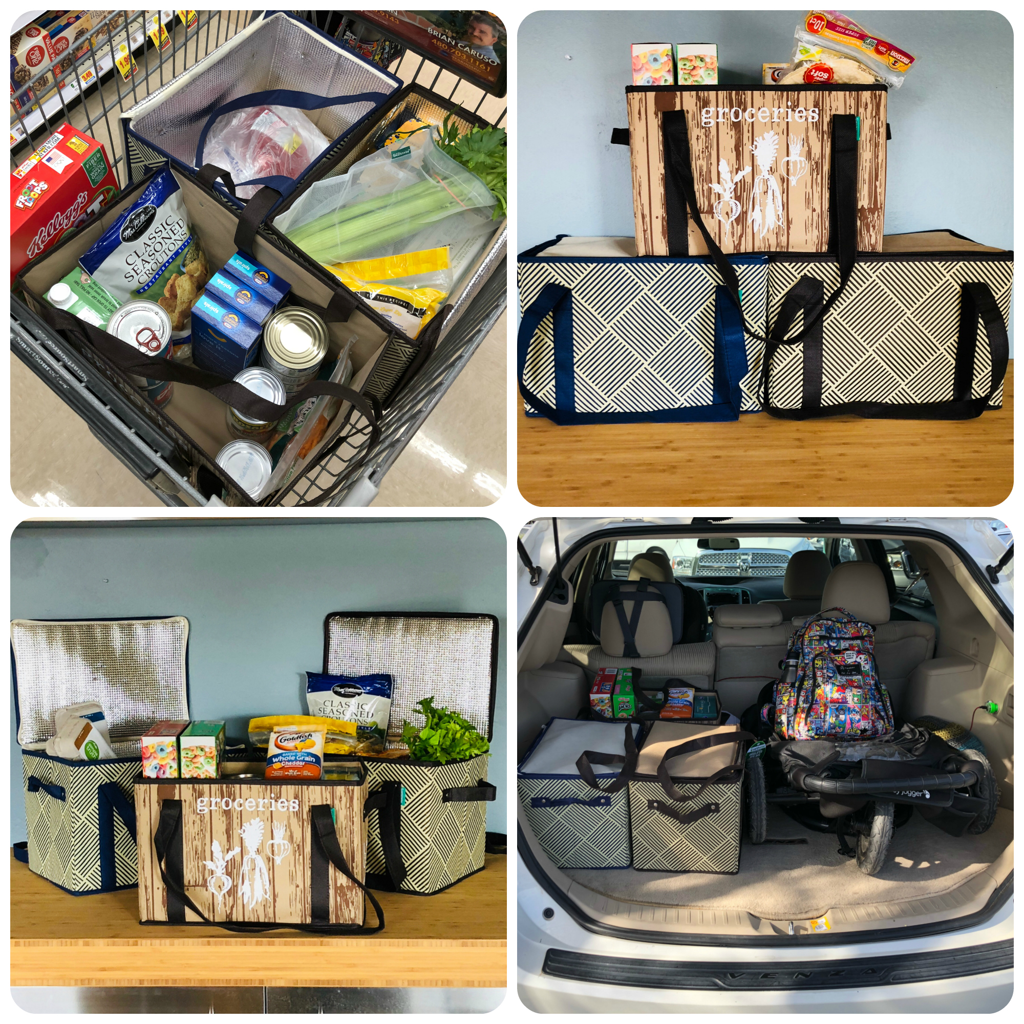 Earthwise Reusable Shopping Boxes | Reusable shopping bags | Reusable insulated shopping boxes | Reduce Reuse Recycle | Reusable Grocery Shopping | Product Review